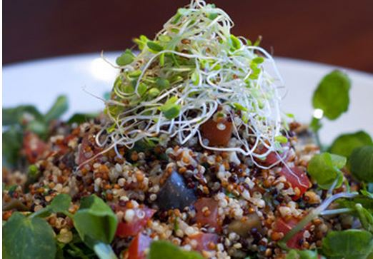 Salada de Quinoa com Berinjela